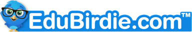 Write my essay services from Edubirdie